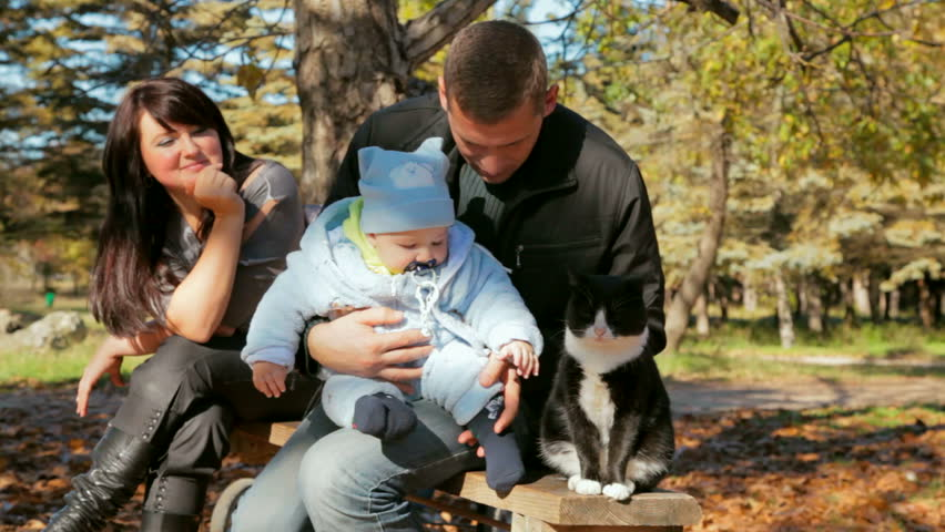 family with kid petting a cat on a bench - HD stock video clip