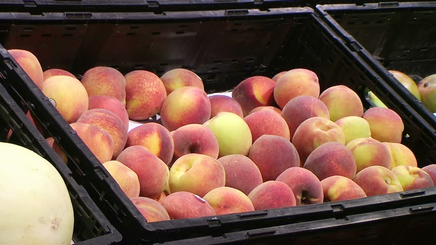Woman selecting fresh peaches in grocery store produce department. - HD stock footage clip