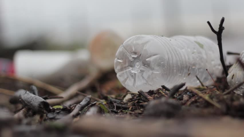 A plastic water bottle on broken tree branches near the river. Depicting trash, litter, water pollution, need for recycling plastic. - HD stock footage clip