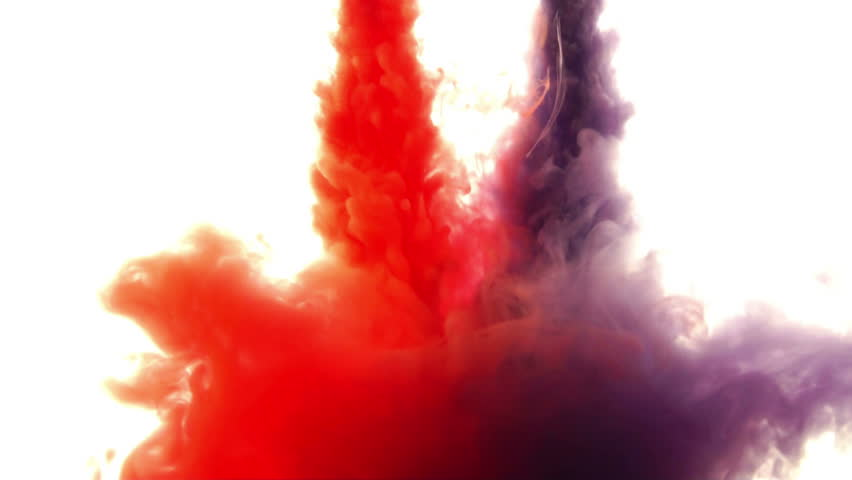 Red and purple  ink in water.Creative slow motion. On a white background. - HD stock footage clip