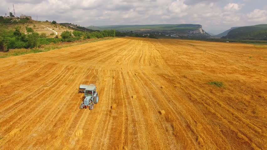 This is an aerial shot of a light blue tractor baler moving along golden stubble wheat field with bales of hay lying around at picturesque valley in Crimea.  - HD stock video clip