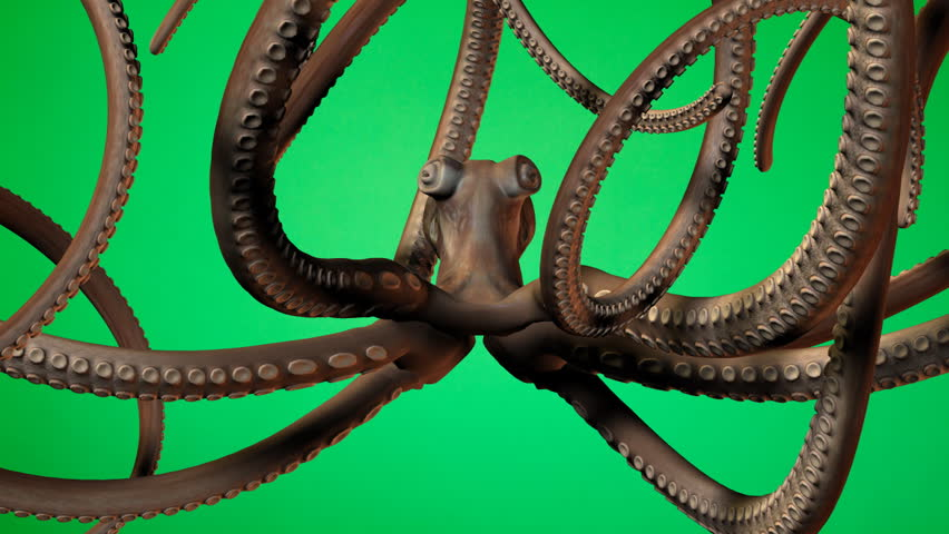 Underwater octopus animation on green screen. Easy editing and looping. HD