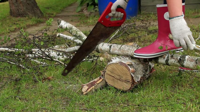 nenets woman cutting firewood - photo #48