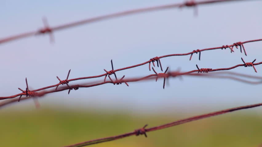 barb wire fence clip - photo #12