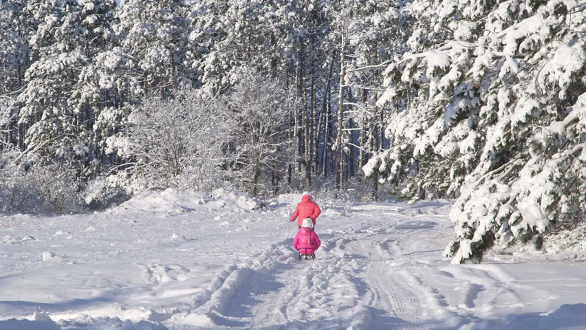 Mother pulling child on sled through snow in winter forest - HD stock video clip