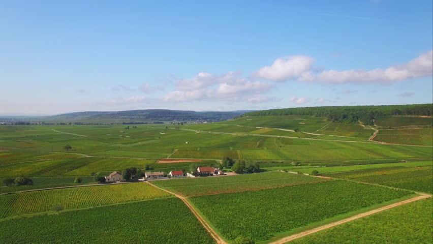 4K Vue aérienne de la campagne française - French countryside aerial shot / Drone survolant des vignes en Bourgogne