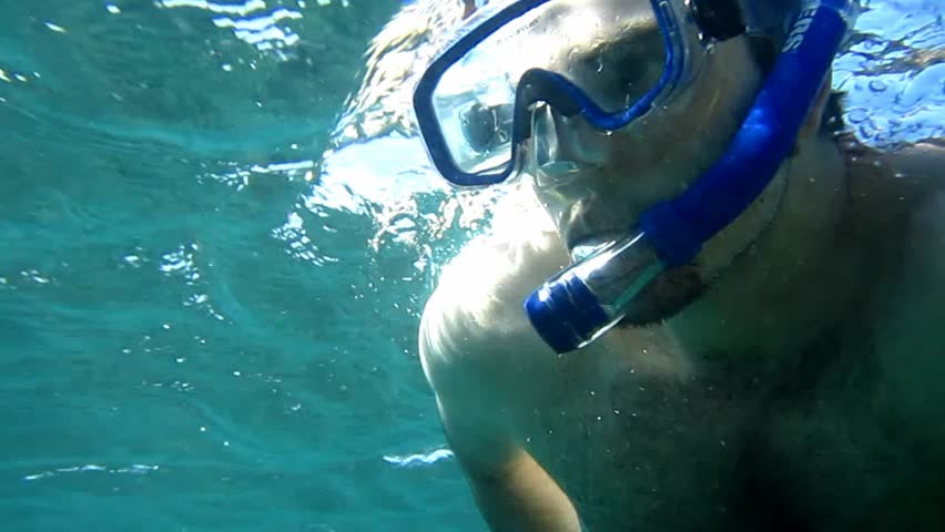 A man snorkels in the waters of the Galapagos Islands - HD stock video clip