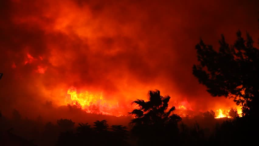 Fire storm in the forest hell on earth; horrific fire destroys thousands of acres of trees