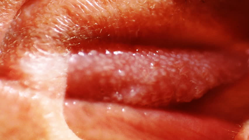 A close-up, strange composition of a human tongue. - HD stock footage clip