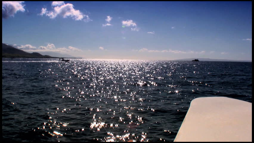 Cruising the blue ocean - HD stock video clip