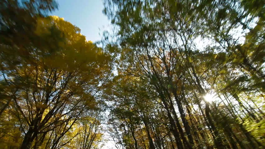 driving on a mountain winding road in autumn, Wide Angle - HD stock footage clip