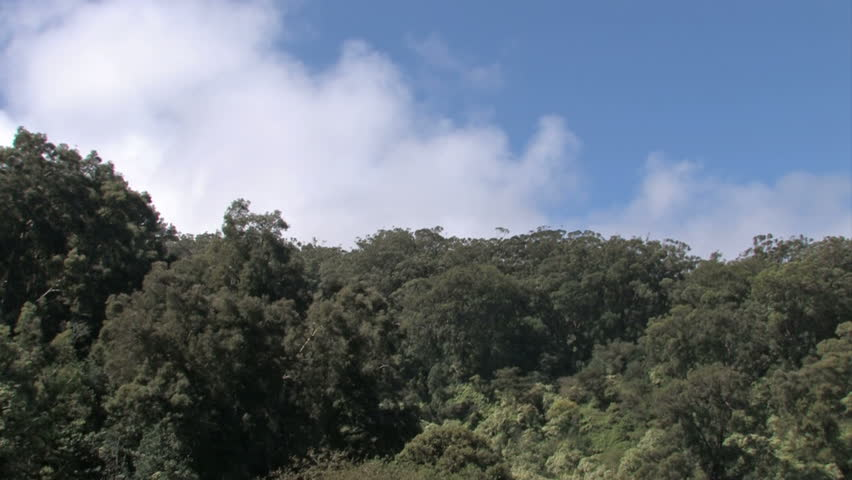 Hawaiian mountain, jungle and rainforest. Clouds passing at high speed, time lapse. Maui, Hawaii - HD stock video clip