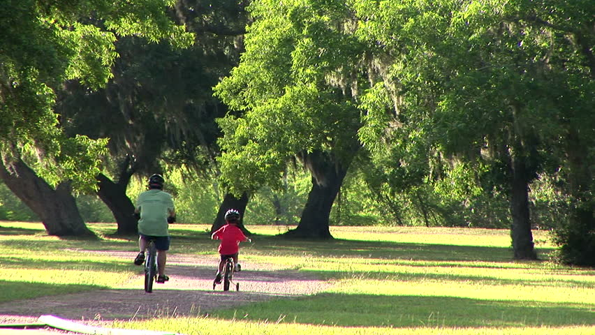 father and son riding their bikes through a park - HD stock video clip
