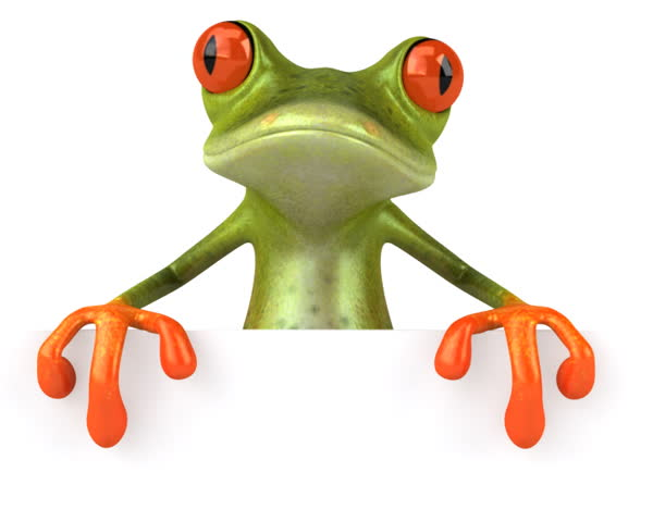 Frog with a blank sign _ PAL - SD stock footage clip