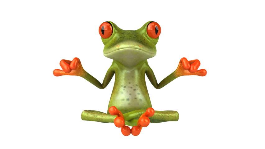 Zen frog - HD stock footage clip
