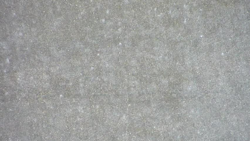 Heavy rain on asphalt surface. Good sound