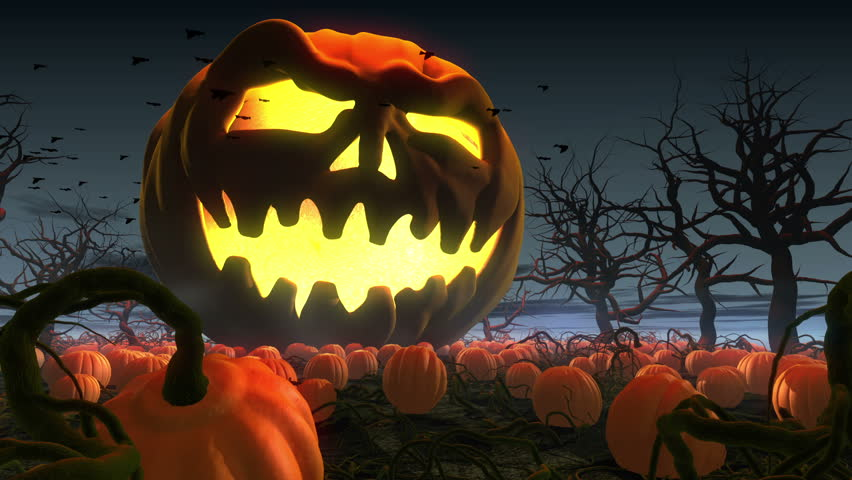 King of pumpkins. Horror Halloween 3d animation. Giant jack o' lantern rolling by  pumpkin field - HD stock footage clip