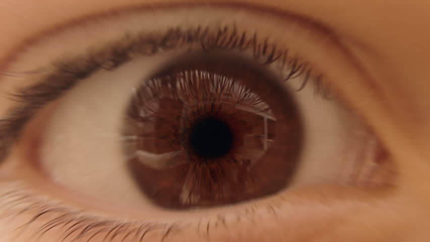 Journey through the eye - camera zooms through pupil, optic nerve and traverses neural network inside the brain. Neuron animation is loop-able from 8:00 to end.