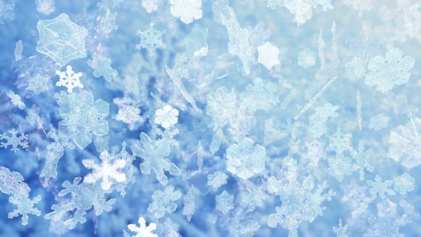 HD - Motion 311: Snowflakes falling (Loop).