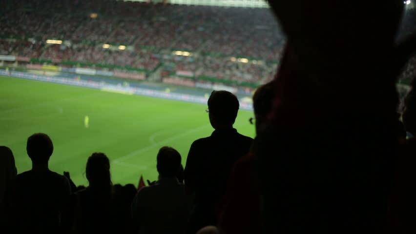 Soccer fans in stadium