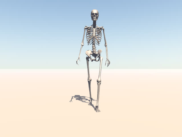 A walking skeleton. - SD stock footage clip