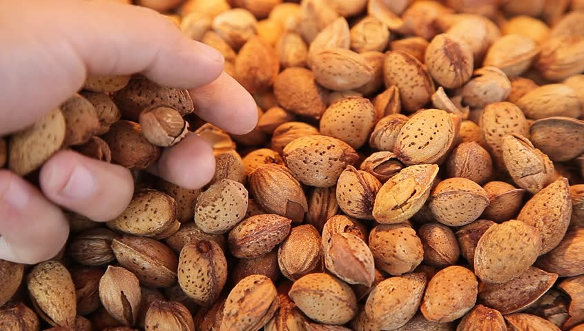 roasted almond in the market - HD stock video clip