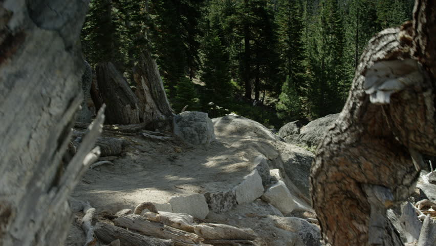 A mountain biker rides down a mountain trail with a majestic view, very quickly during the day filmed at the Lake Tahoe National Park in HD with a sweeping crane shot