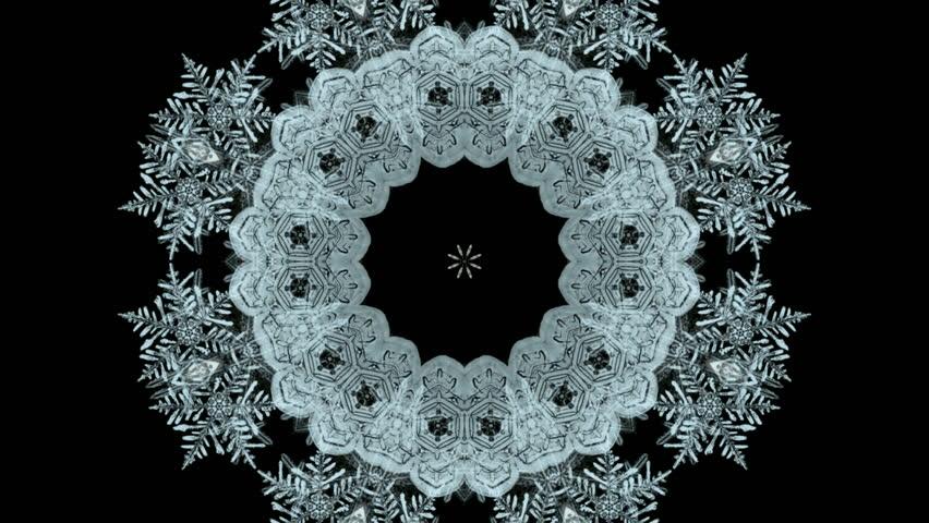 falling snowflake shaped flower pattern,chrismas,xmas,lace,wedding background.
