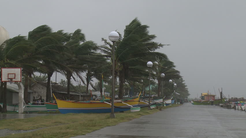 Palm Trees And Fishing Boats Sway In Hurricane Winds - Full HD 1920x1080 30p shot on Sony EX1.