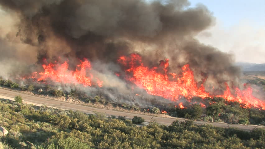 Wildfire Flames, Forest Fully Engulfed by Fire 3