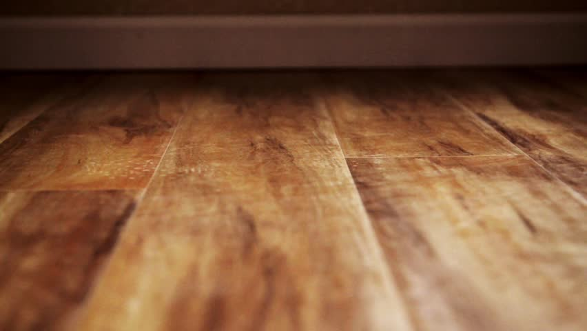 Wood definition meaning for Define floor