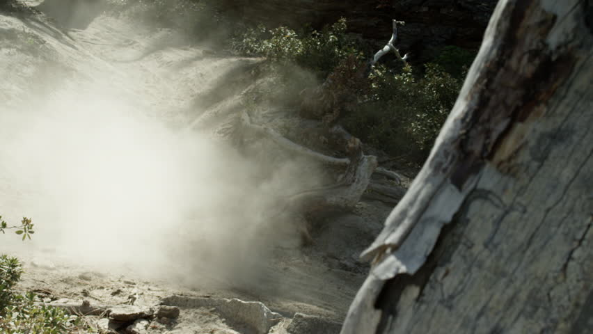 An extreme mountain biker speeds down a forest trail during the day in slow motion