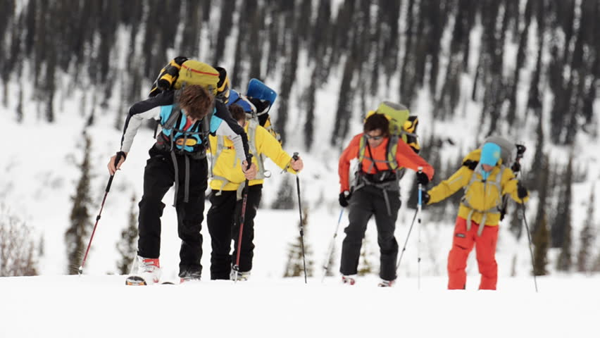 A group of hikers walk in a line with cross country skis as they explore the snow covered Alaskan wilderness during the day