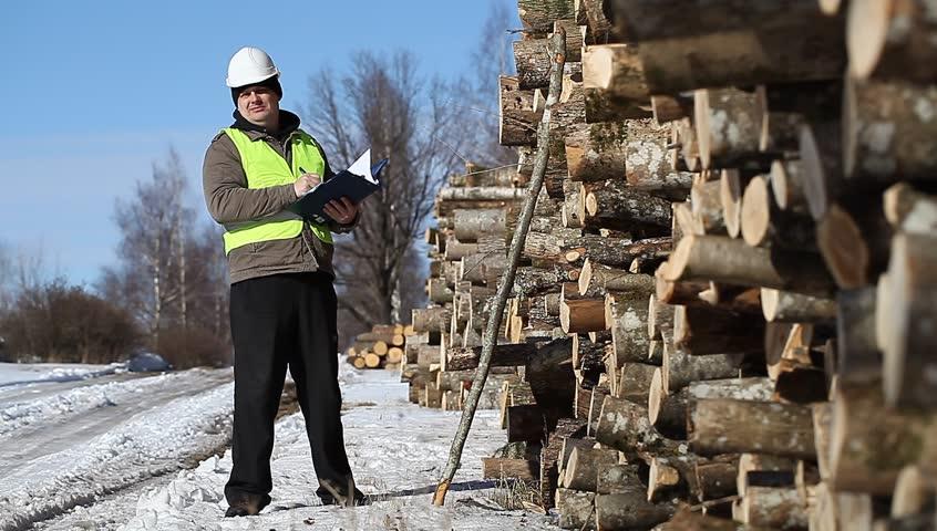 Lumberjack near at the log pile