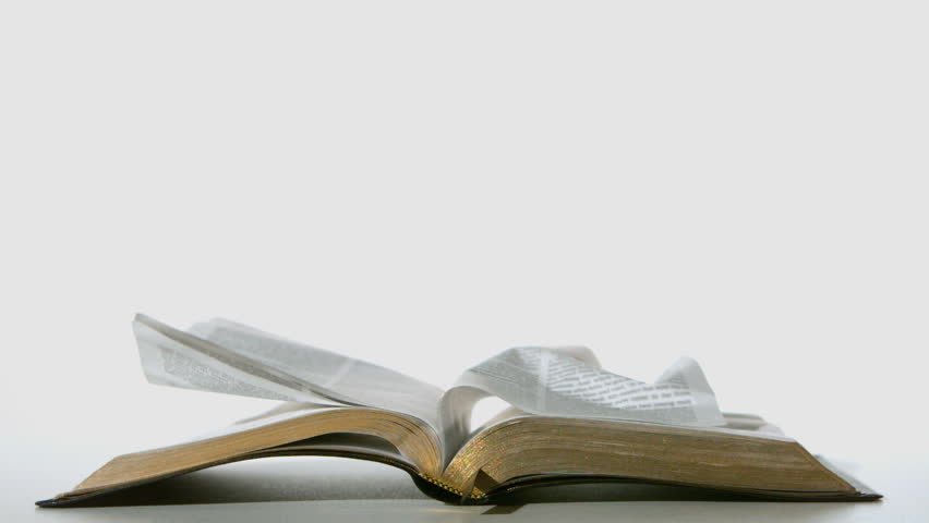 Bible pages turning in the wind on white background in ...
