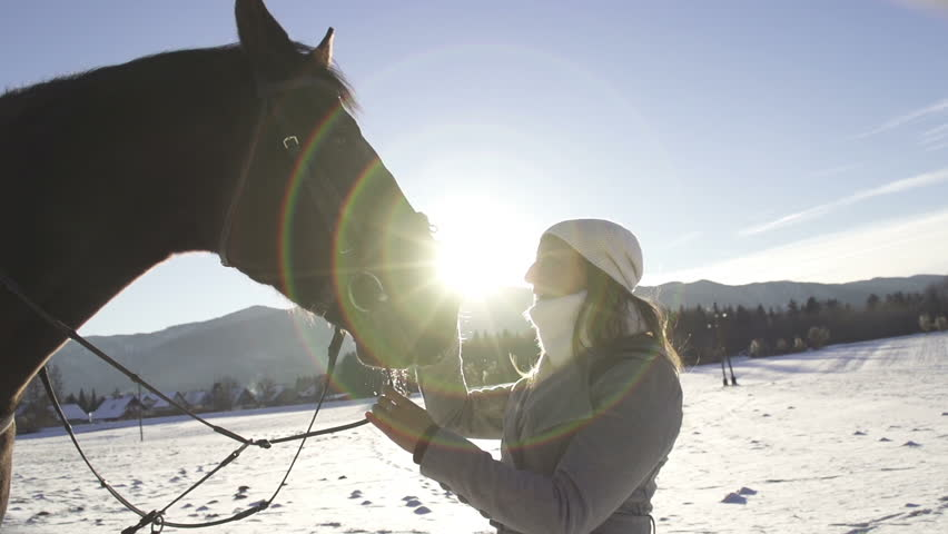 SLOW MOTION: horse and a girl - HD stock footage clip