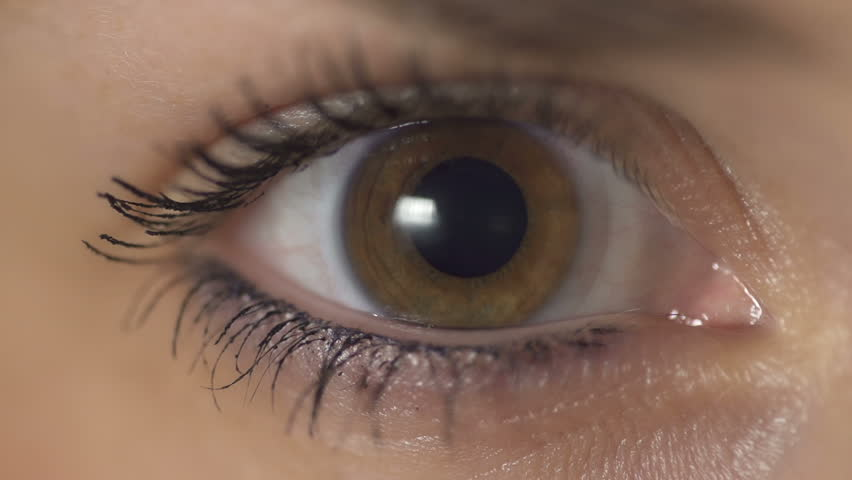 SLOW MOTION: Contraction of the pupil
