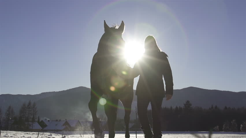 SLOW MOTION: Woman and a horse in winter land - HD stock video clip