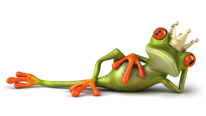 King frog - HD stock video clip