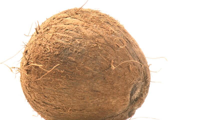 Coconut - HD stock footage clip