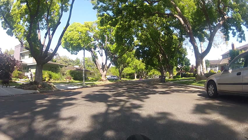 A Typical Tree-lined Street In The Neighborhoods Of ...