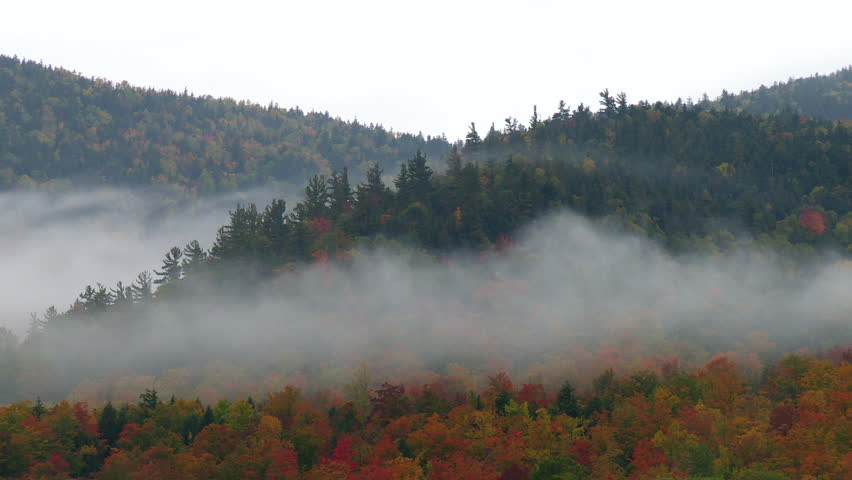 Time lapse of mist growing over forested hills covered in fall foliage - HD stock footage clip