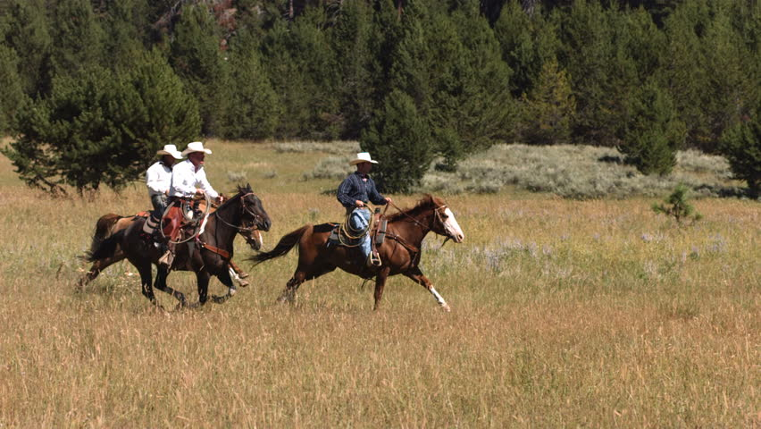 Three cowboys on horses, slow motion - HD stock footage clip