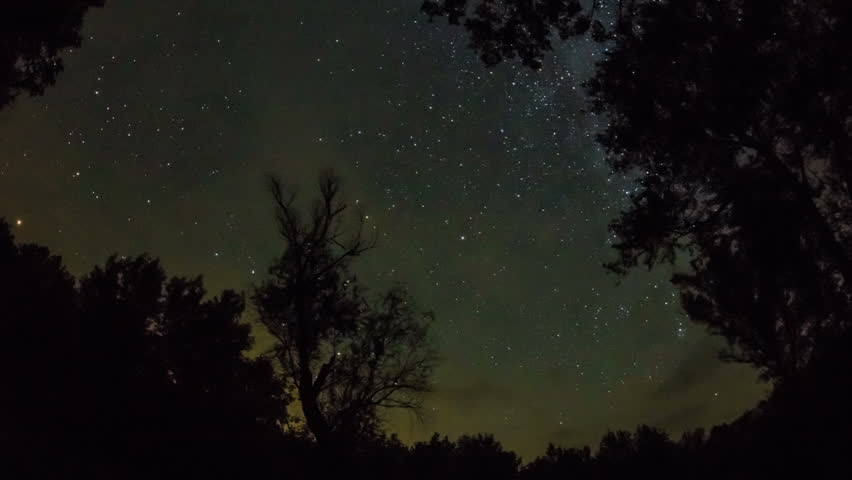 Timelapse of a starry night with a star trail effect with trees on a background