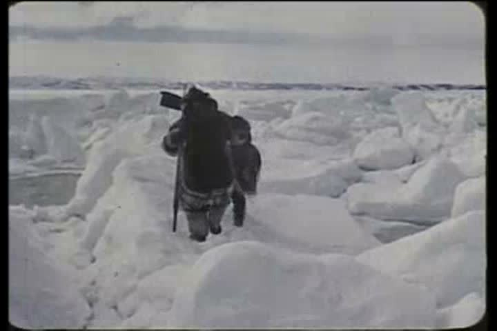 1950s - Eskimos in the Arctic move across the tundra using sled dogs in the 1950s.