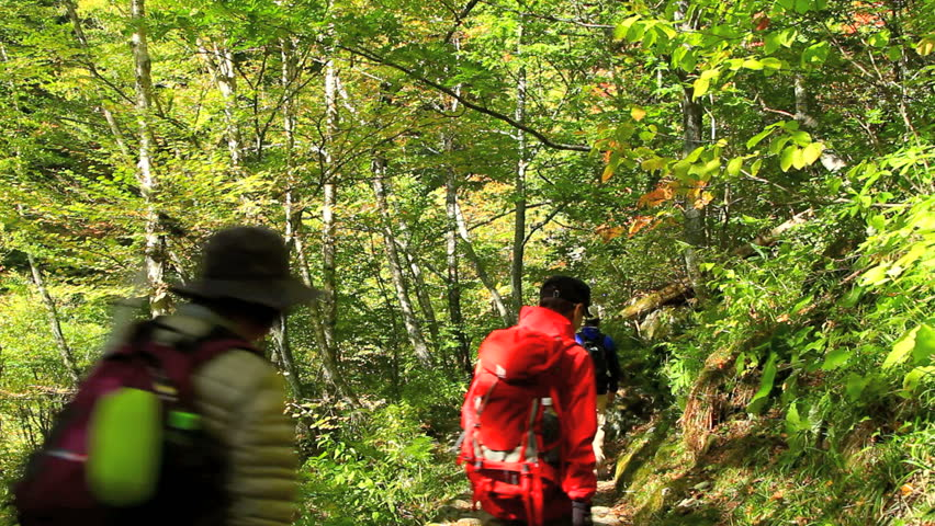 Group of hikers  taking a walk through the mountain path.