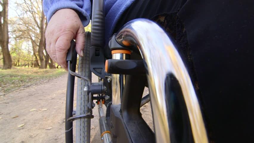 Caregiver Pushing Senior Person In Wheelchair Stock