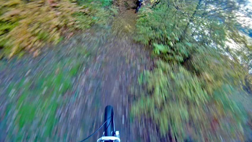 Extreme sport race, mount biker drive downhill deep in forest over autumn leafs. Back look of the other competitor