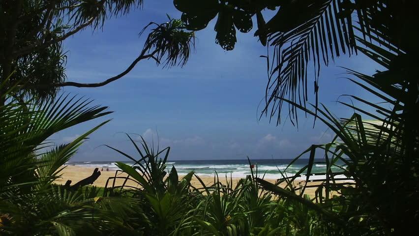 Tropical beach - HD stock footage clip
