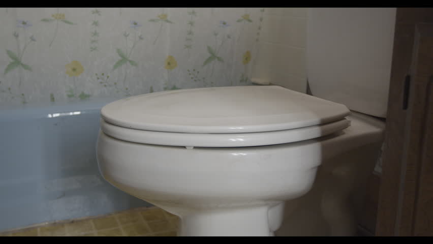 Lid of toilet being opened and closed